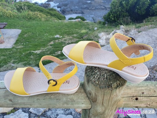 Hotter, Tropic, Citrus Yellow