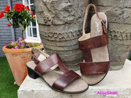 Step on Airs, Springfield 654, Brown